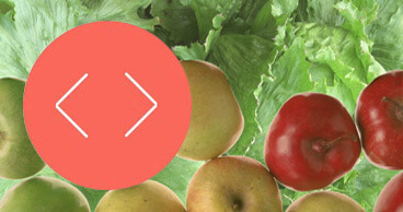 Fruit and Vegetable Texture Analysis | Stable Micro Systems